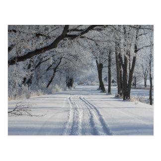 Rastro que camina del invierno postal