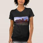 Rastro Sedona de la roca de la catedral Camisetas