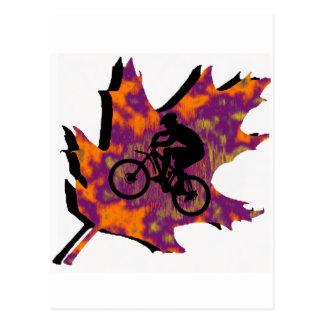 Rastros de Adirondack de la bici Postal