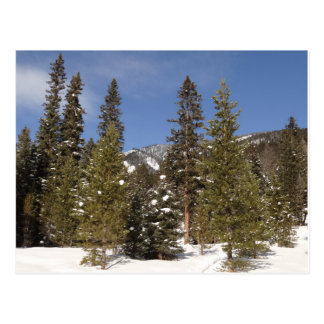 Rastros de montaña de Montana en foto del paisaje Postal