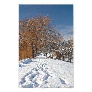 Rastros en la nieve