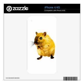 rat-13- U iPhone 4S Skin