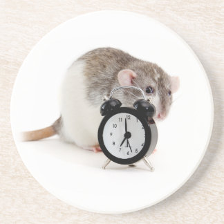 Rat and alarm clock. sandstone coaster