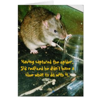 rat birthday card cards
