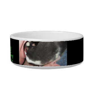 RAT FOOD BOWL