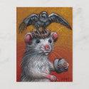 Rat in Raven Hat Postcard