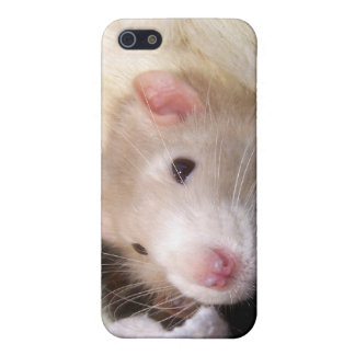 Rat iPhone Case