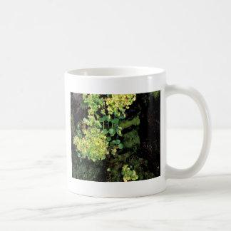 Rat Island wildflowers, Monkey flower, saxifrage Mug