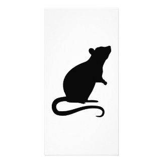 Rat mouse card