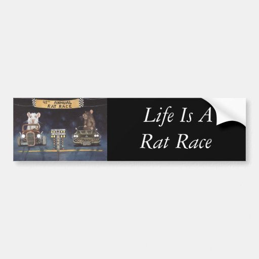 Rat Race Bumper Sticker