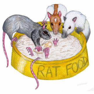 rat sculpture - rats arguing over porridge! photo cutout