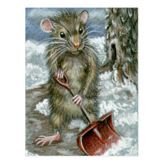 Rat shoveling snow Postcard