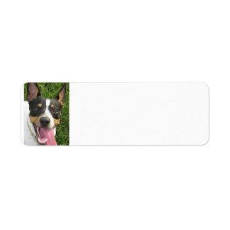 rat terrier 2 label