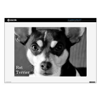 Rat Terrier, Black and White, Decals For Laptops