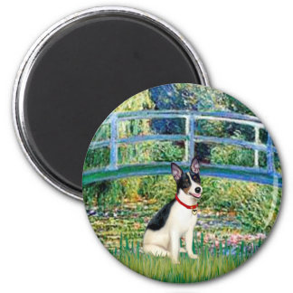 Rat Terrier - Bridge Magnet