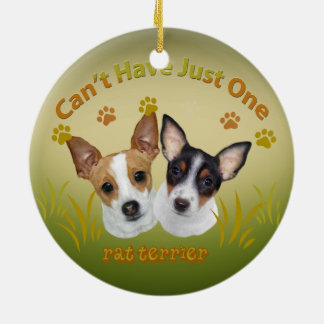 Rat Terrier Can't Have Just One Ornament