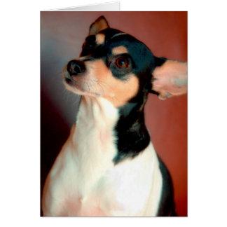 Rat Terrier Card