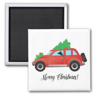 Rat Terrier Dog Driving a Christmas Car Magnet
