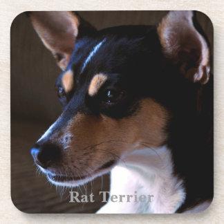 Rat Terrier Drink Coaster