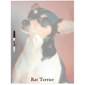 Rat Terrier Dry Erase Board
