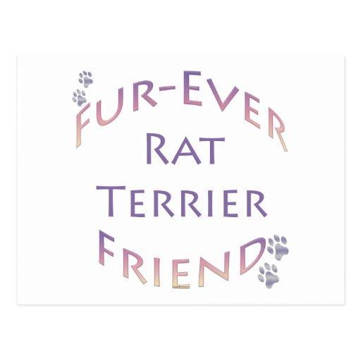 Rat Terrier Furever Friends Postcard
