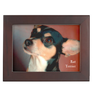 Rat Terrier Keepsake Box
