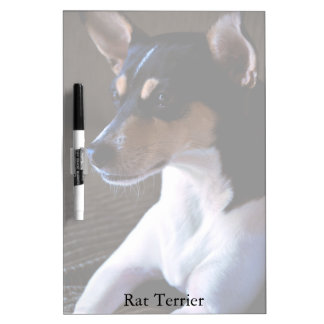 Rat Terrier Medium Dry Erase Board