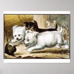 Rat Terrier Puppies - Vintage Fine Art Poster