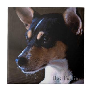 Rat Terrier Tile