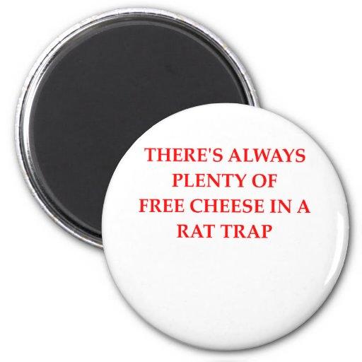 rat trap refrigerator magnet