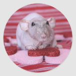 Rat Valentine Stickers