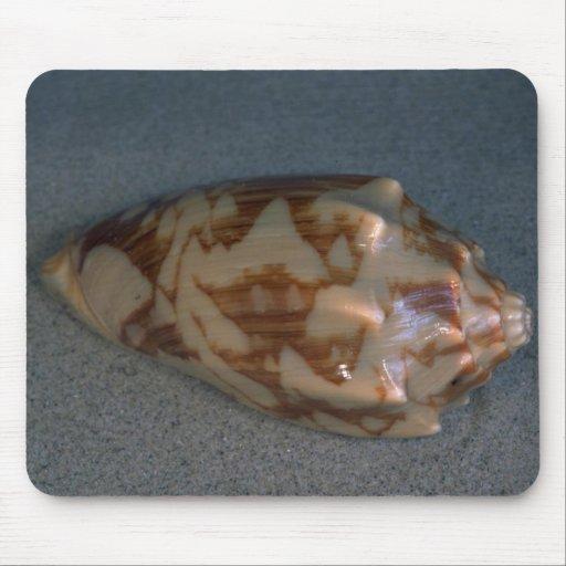 Rat volute (Voluta verspertilio) Shell Mouse Pad