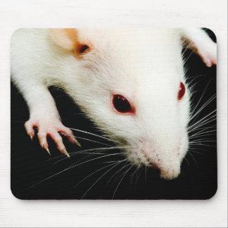 Rata blanca alfombrilla de ratones