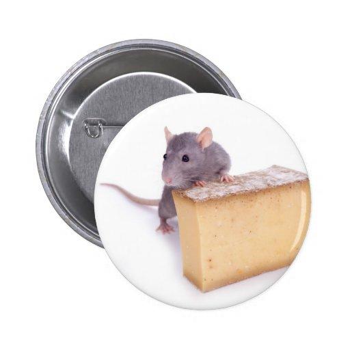 rata con queso pin
