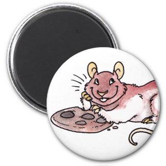 Rata con un imán de la galleta