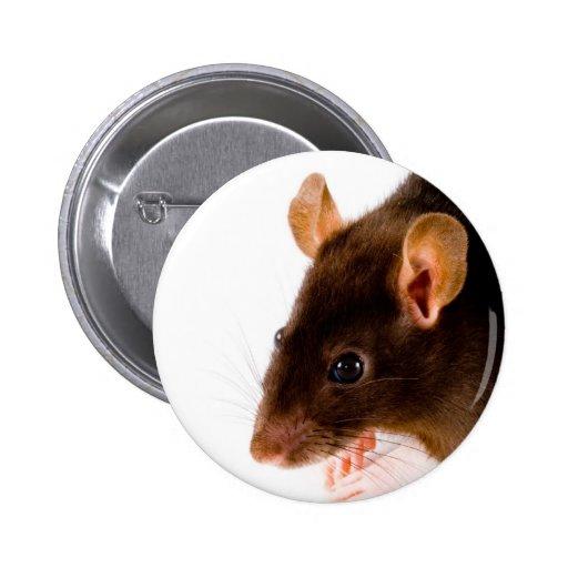 Rata de Brown Pin Redondo 5 Cm