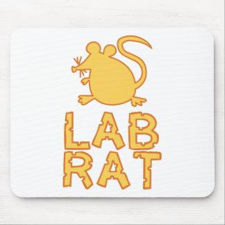 Rata del laboratorio del queso tapete de ratón