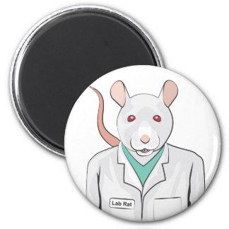 Rata del laboratorio iman de nevera
