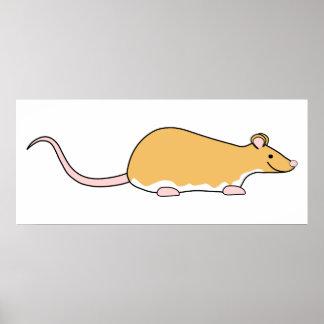 Rata del mascota. Canela Berkshire, vientre blanco Posters