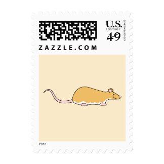 Rata del mascota. Canela Berkshire, vientre blanco Franqueo