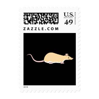 Rata del mascota. Cervatillo Berkshire, vientre Sellos