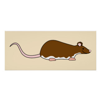 Rata del mascota de Brown. Berkshire, vientre blan Posters