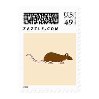 Rata del mascota de Brown. Berkshire, vientre Franqueo