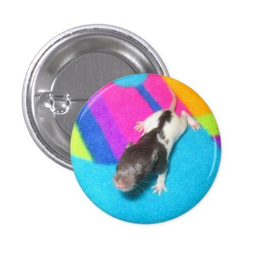 Rata encapuchada del bebé pin
