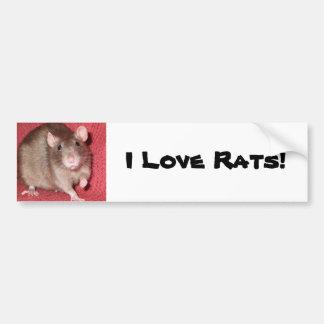 Rata linda pegatina de parachoque