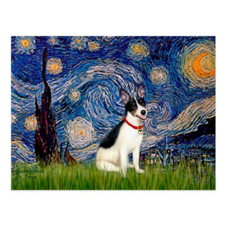 Rata Terrier - noche estrellada Postales