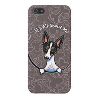 Rata Terrier tricolora IAAM iPhone 5 Funda