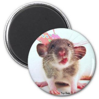 Rata tonta de Flutterby Imán Redondo 5 Cm