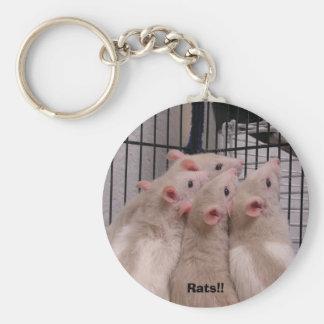 ¡Ratas!! Llavero Redondo Tipo Pin