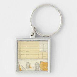 Rates and letter postage keychain